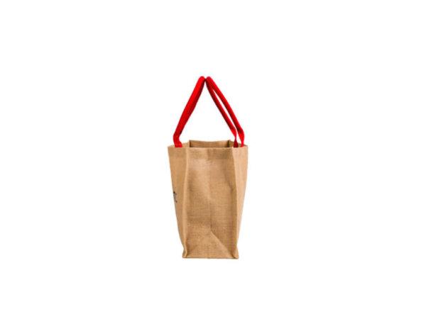 Organic bag1